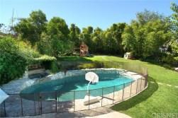 calvin-backyard